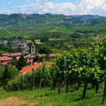 Frazione Annunziata vista dai vigneti