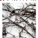 THE WORLD OF FINE WINE – Issue 51, 2016